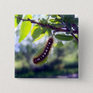Forest Tent Caterpillar 1 Button