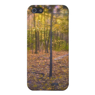 Forest Trail Vermont Foliage Cover For iPhone 5/5S