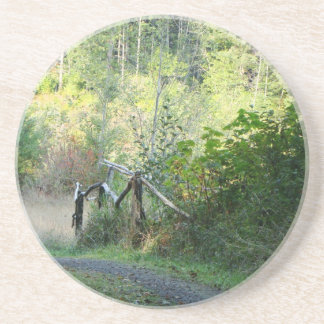 Forest Trees Redwoods Hiking Trail Scenic Oregon Beverage Coasters