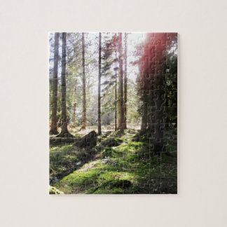 Forest View 1 Jigsaw Puzzle