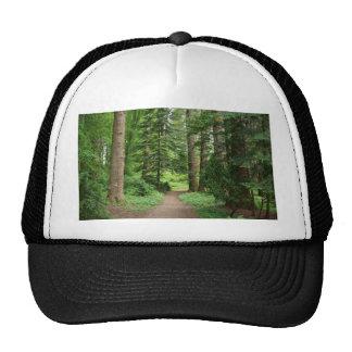 Forest walk, highlands, Scotland Trucker Hat