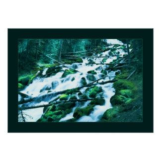 Forest Waterfall Posters