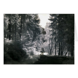 Forest Way/Infrared Photography Card