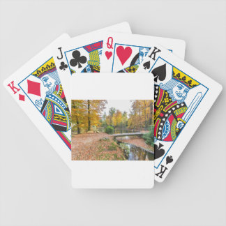 Forest with pond and bridge in fall colours bicycle playing cards