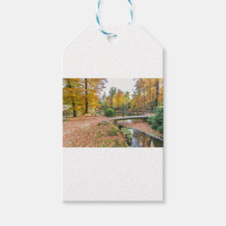 Forest with pond and bridge in fall colours pack of gift tags