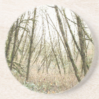 Forest Woods Leaves Trees Hiking Scenic Oregon Beverage Coasters