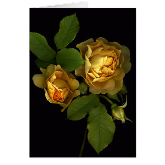 Forever Yellow Roses Card