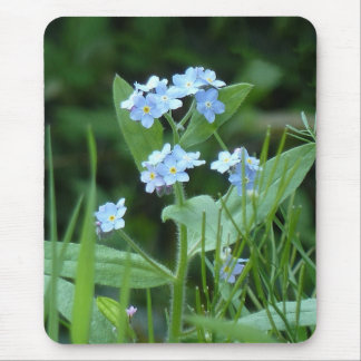 Forget-me-not Mouse Pad