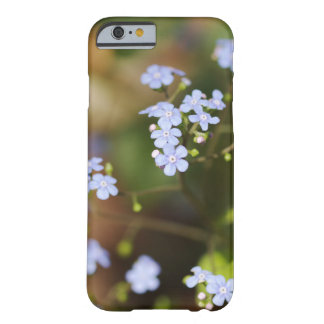 Forget-Me-Not Phone Case, Forget-Me-Not Photograph Barely There iPhone 6 Case
