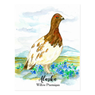 Forget Me Not Ptarmigan State of Alaska Postcard