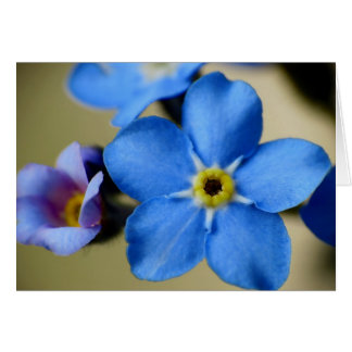 Forget-Me-Nots 11 Mother's Day Card