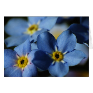 Forget-Me-Nots 7 Birthday Card