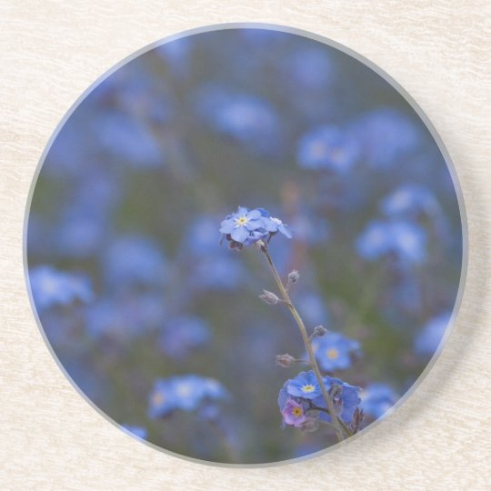 Forget-Me-Nots Coaster