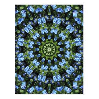 Forget-me-nots, Flower Mandala Postcard