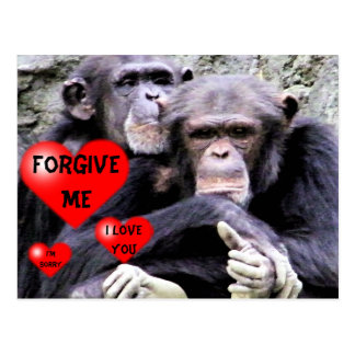 Forgive me,Sorry_ Postcard