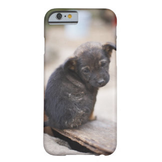 Forlorn puppy barely there iPhone 6 case