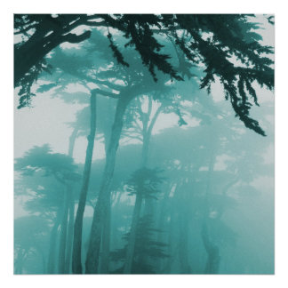 Forrest Fog photo painting Poster