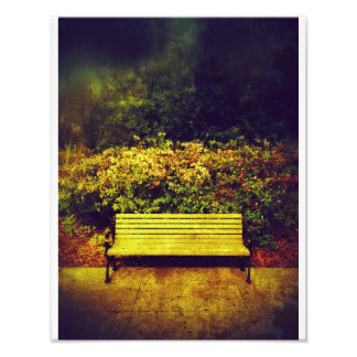 Forsyth Park Bench Photographic Print