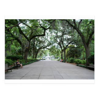 Forsyth Park in Savannah, GA Postcard