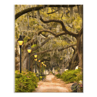 Forsyth Park - Photo, Savannah, Georgia (GA) USA Photographic Print