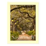 Forsyth Park - Savannah, GA Postcard