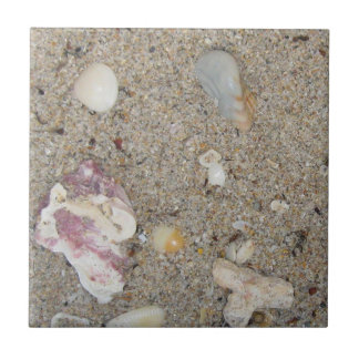Fort Lauderdale Beach Sand, Shells, Coral Tile