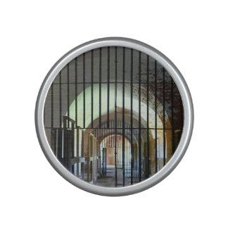 Fort Pulaski Jail Speaker