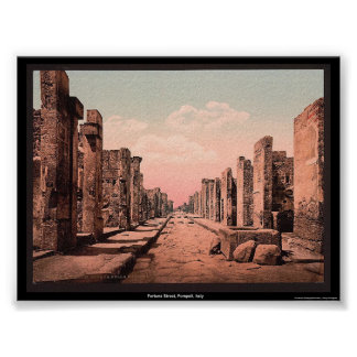 Fortuna Street, Pompeii, Italy Poster