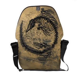 Fossil Dinosaur medium Rickshaw messenger bag