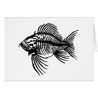 Fossil Fish Card