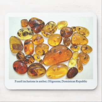 Fossil inclusions in Oligocene Dominican amber Mouse Pad
