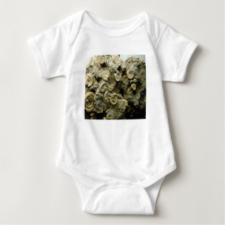fossil shells art baby bodysuit