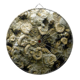 fossil shells art dartboard