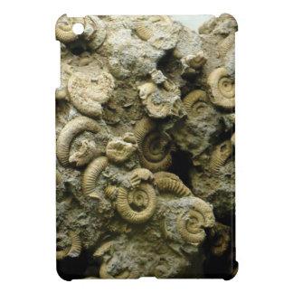 fossil shells art iPad mini cover