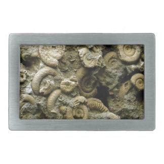 fossil shells art rectangular belt buckle