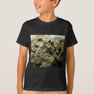 fossil shells art T-Shirt