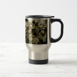fossil shells art travel mug