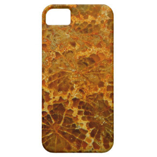 Fossilized coral natural jasper gemstone case for the iPhone 5