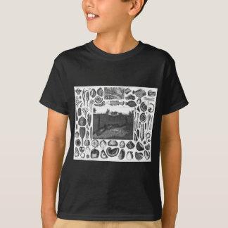 FOSSILS T-Shirt