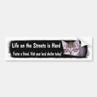 Foster Pets Bumper Sticker