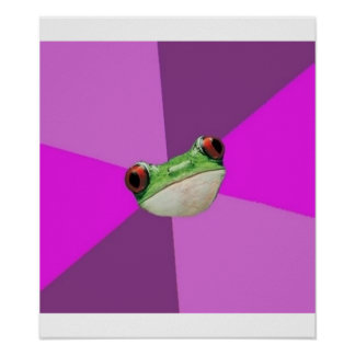 Foul Bachelorette Frog Advice Animal Meme Poster