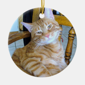 Found Feline Tabby Cat Happy Healthy Spoiled Ceramic Ornament