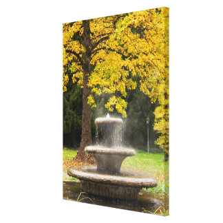 Fountain by a tree in fall, Germany Canvas Print