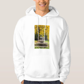 Fountain by a tree in fall, Germany Hoodie