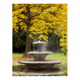 Fountain by a tree in fall, Germany Postcard