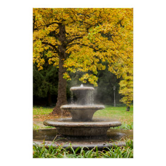 Fountain by a tree in fall, Germany Poster