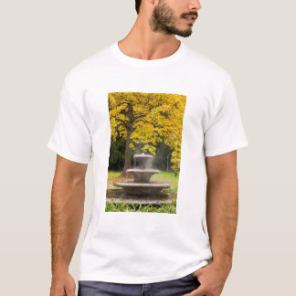 Fountain by a tree in fall, Germany T-Shirt