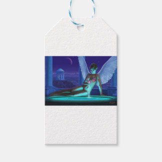 Fountain of Dreams Gift Tags