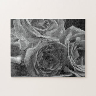Fountain of Roses Jigsaw Puzzle