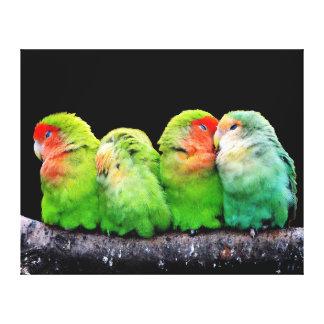 Four Adorable Parrots Together Wrap Canvas Print